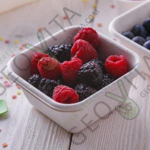 Одноразовый контейнер 250 мл. © GEOVITA - Одноразовая посуда от производителя!