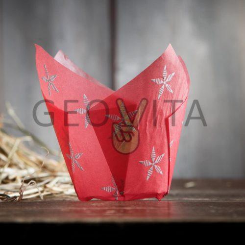 Форма тюльпан