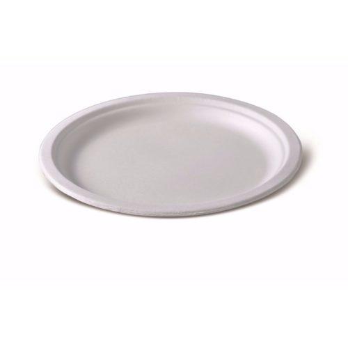 Одноразовая тарелка 10»
