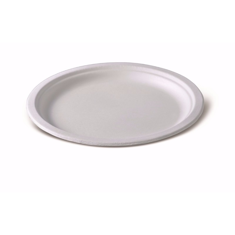 Новая тарелка большого диаметра. © GEOVITA - Одноразовая посуда от производителя!